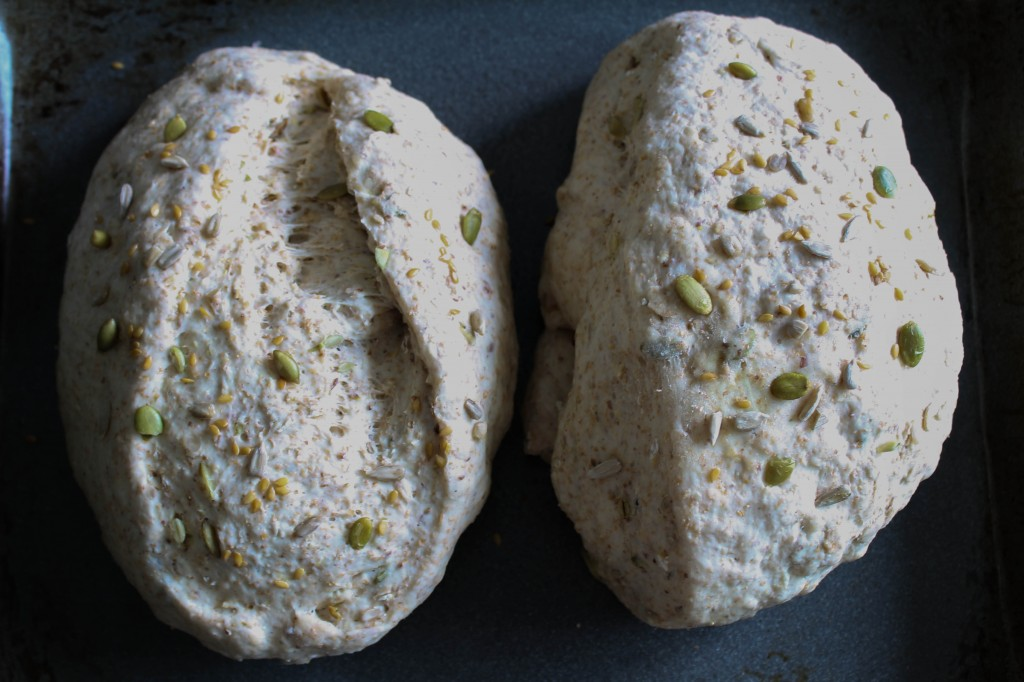Multigrain bread dough