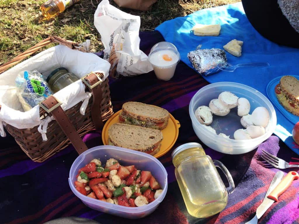 First picnic of the year!