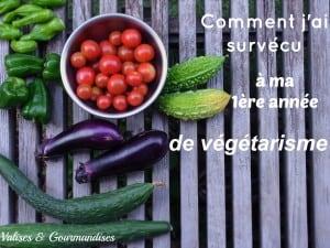 pourquoi devenir végétarien + astuces pour vous faciliter la tâche - www.valisesetgourmandises.com