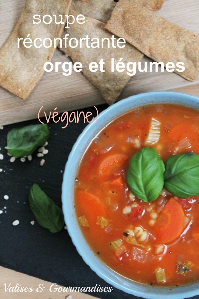 soupe réconfortante orge et légumes, digne de la meilleure des mamies - www.valisesetgourmandises.com