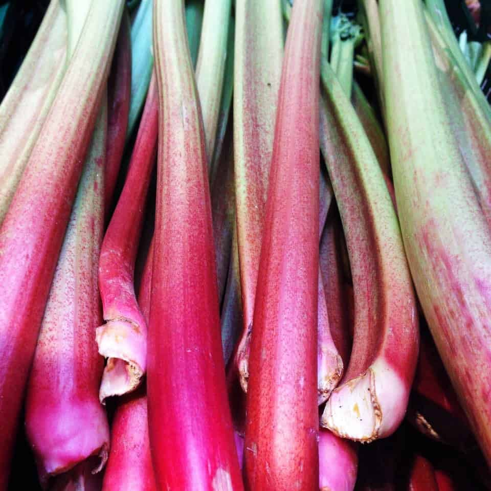 rhubarb and date fruit sauce