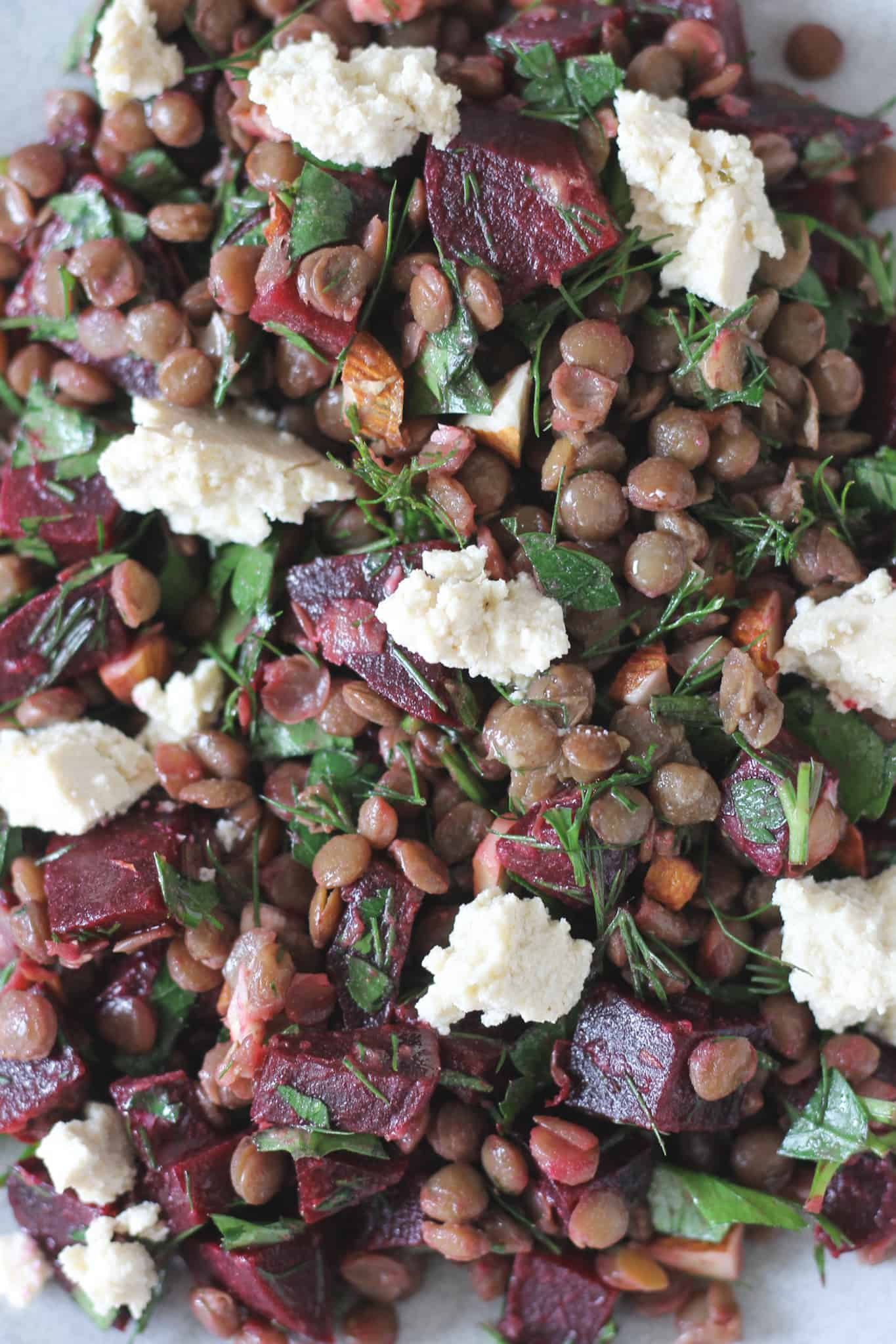 Close up of lentil and beetroot salad with tofu feta and fresh herbs